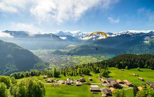 Paraglider über grünen Wiesen mit Blick auf die Berner Oberländer Berge