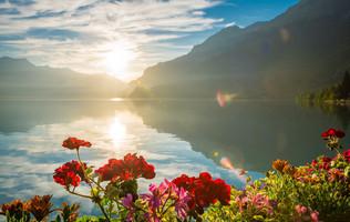 Bunte Blumenbeeten zieren die Seepromenade im Dorf Bönigen. Im Osten geht die Sonne auf und wift ihr Licht auf den Brienzersee.