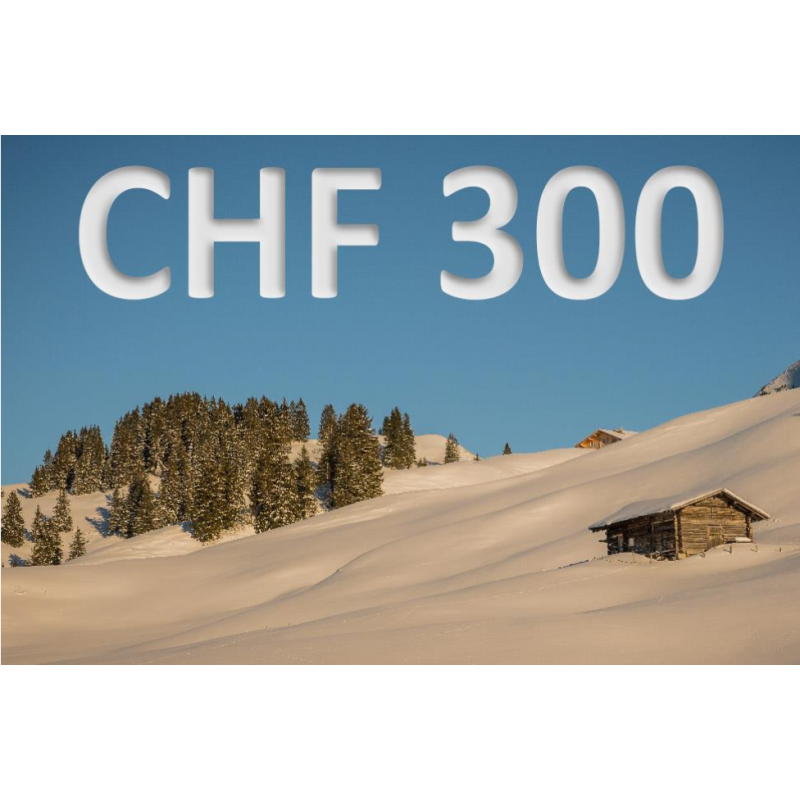 CHF 300 experience voucher